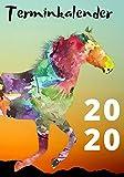 Terminkalender 2020: Terminkalender 2020 Pferd Motiv - 366 leere Seiten (liniert) für Ihre Planung...