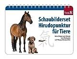 Schaubilderset Hirudopunktur für Tiere - Deutsche Ausgabe: Vorschläge zum Setzen von Blutegeln auf...