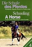 Die Schule des Pferdes, Teil 4: Alles über Außengalopp, fliegende Wechsel und Galoppirouetten