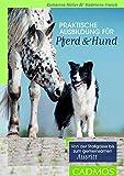 Praktische Ausbildung für Pferd & Hund: Von der Stallgasse bis zum gemeinsamen Ausritt