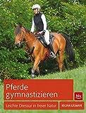 Pferde gymnastizieren: Leichte Dressur in freier Natur