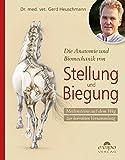 Die Anatomie und Biomechanik von Stellung und Biegung: Meilensteine auf dem Weg zur korrekten...