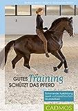 Gutes Training schützt das Pferd: Schonende Ausbildung nach osteopathischen Grundsätzen...
