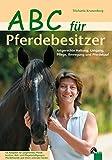 ABC für Pferdebesitzer: Das erste (eigene) Pferd