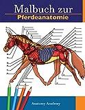 Malbuch zur Pferdeanatomie: Unglaublich detailliertes Arbeitsbuch zum Selbsttest der Pferdeanatomie...