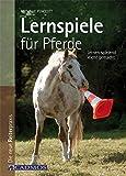 Lernspiele für Pferde: Lernen spielend leicht gemacht