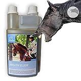 Hustensaft Pferd I Thymian Bronchial Kräuter I Husten-Elixir I Saft + Kamille Fenchel I Mischung...