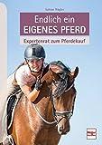 Endlich ein eigenes Pferd: Expertenrat zum Pferdekauf