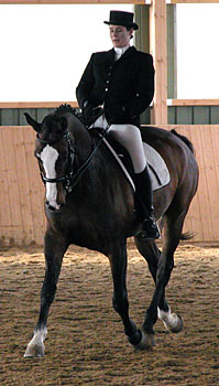 Im Mitteltrab streckt sich das Pferd deutlich