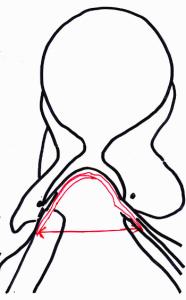 Das Kopfeisen in einem Sattel