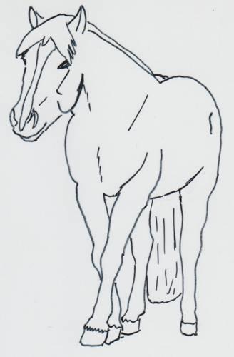 Pferd mit Dummkoller