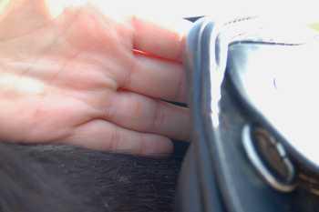 Vier Finger sollen zwischen Sattel und Widerist passen