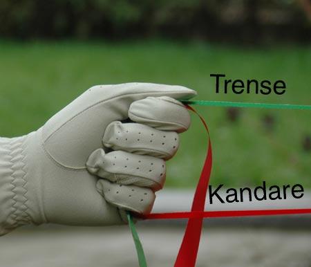 Parallel ganze Hand - (Foto: Martin Goldmann)