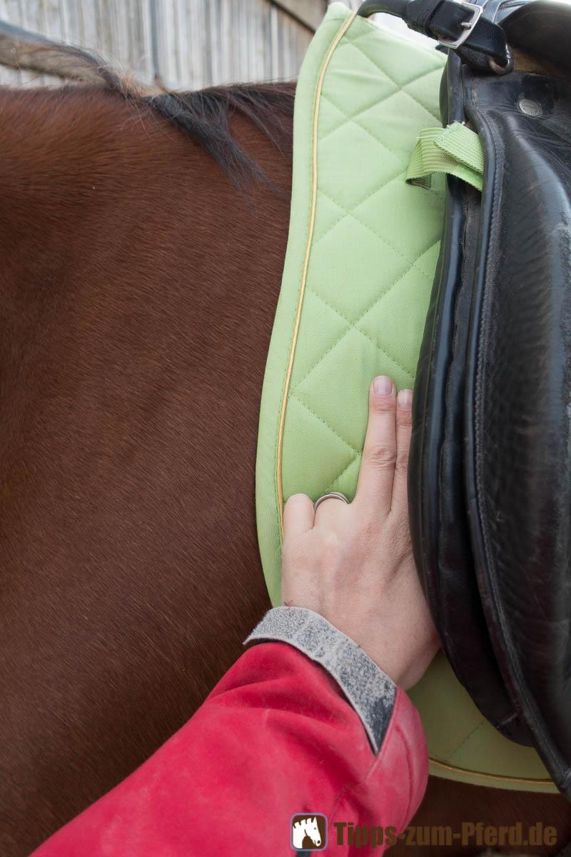 Die Vorderkante des Sattels sollte 2 Fingerbreit Platz zum Schulterblatt haben