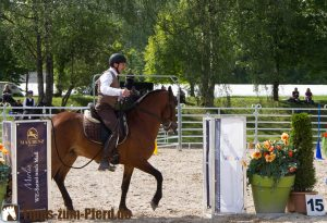 Working Equitation auf der Pferd International 2015 - (Foto: Franziska Goldmann)